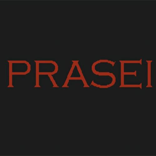PRASEI Architecture & Interior- Jasa Interior Desainer Indonesia